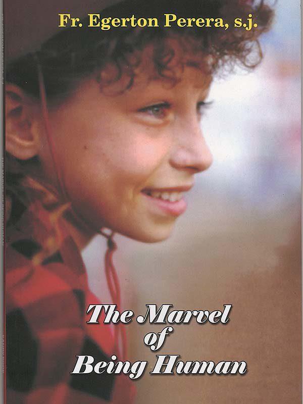 the marrel of begin